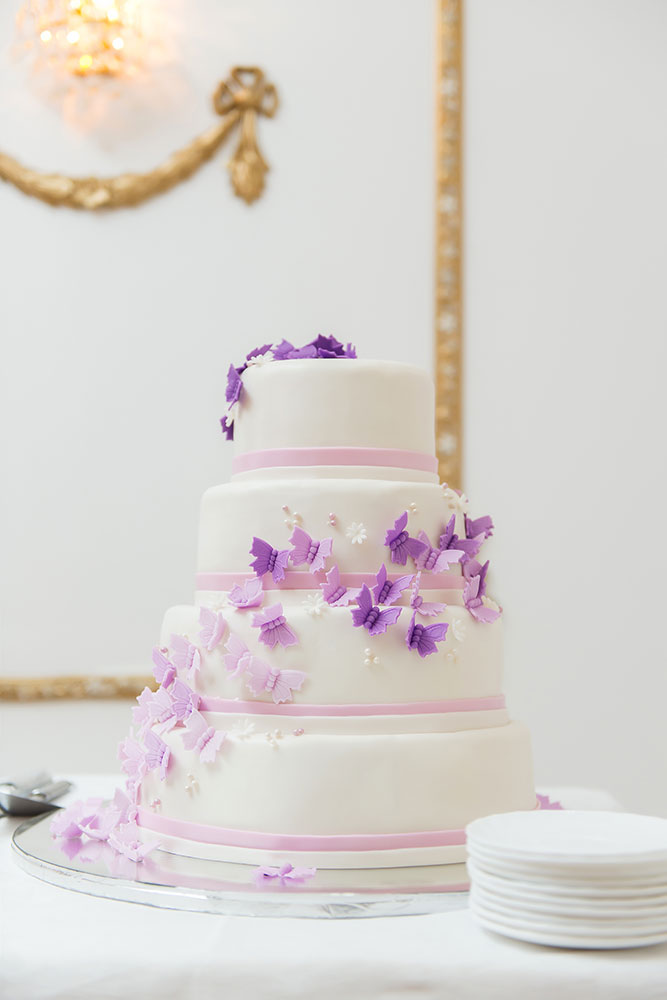 Purple Butterfly Style Your Cake